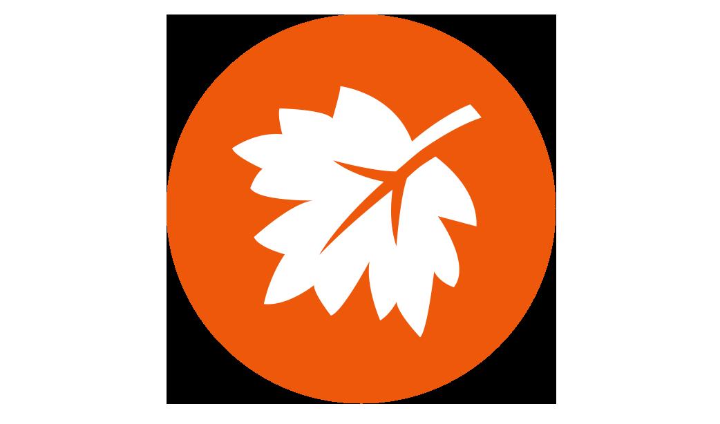 Fall_Icon