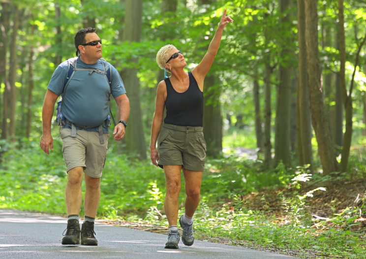 people hiking on a trail
