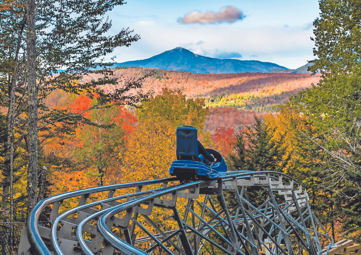 a mountain coaster sails down the track through colorful trees